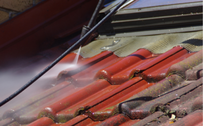 5 Reasons why you shouldn't pressure wash your roof